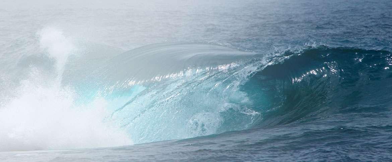 EagleBurgmann - Sealing solutions for marine current turbines